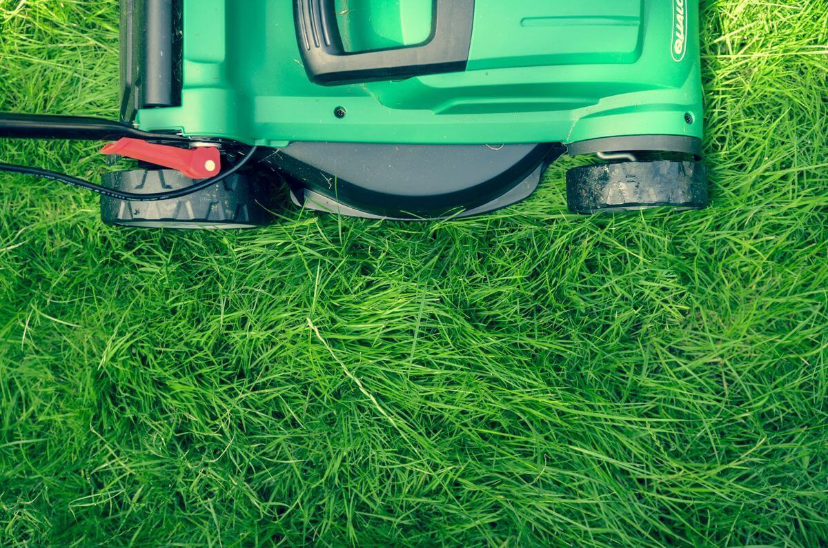 Cut backyard grass Northcote